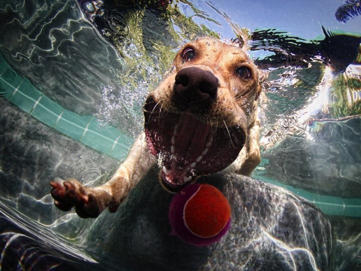 underwaterball
